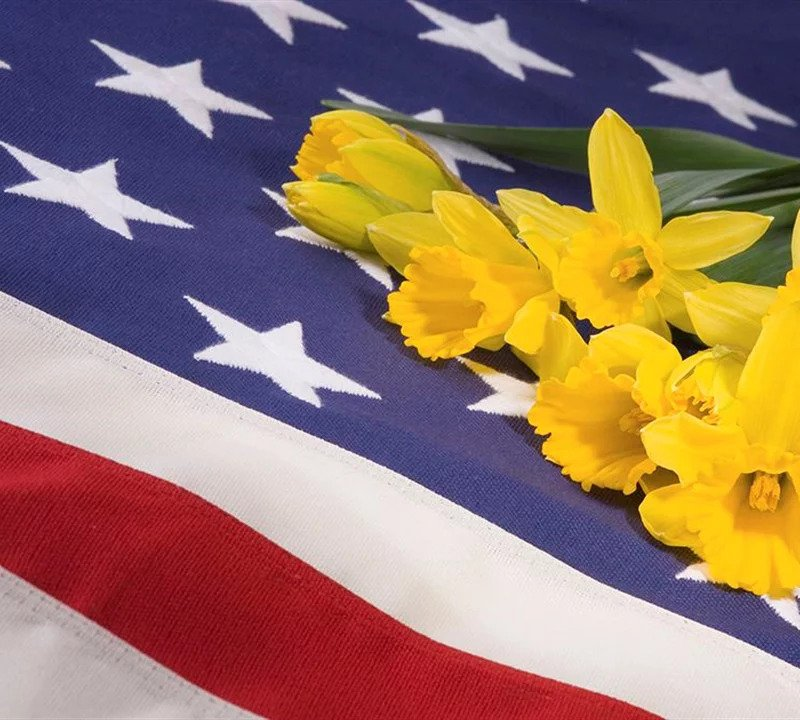 toale-brothers-funeral-home-sarasota-veterans-services